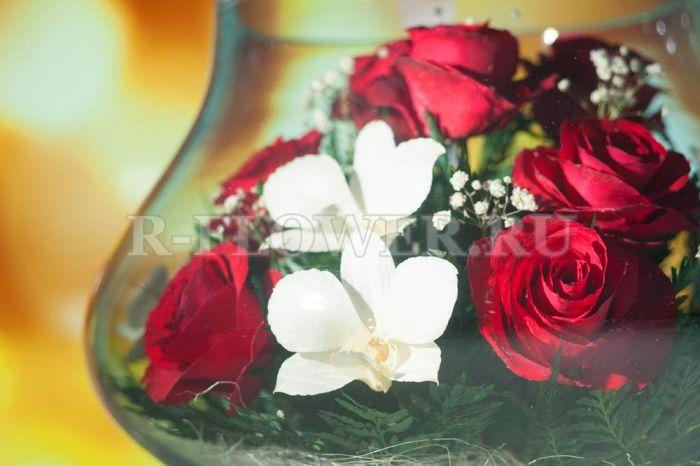 Живые цветы в вакууме оптом пенза купить розы кусты оптом