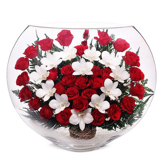 Где оптовые продажи живых цветов #12